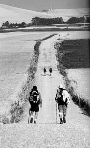 Grazie Compagno Camminante - Dedicata ai camminatori dializzati e trapiantati che partiranno per Santiago de Compostela il 20 giugno 2014